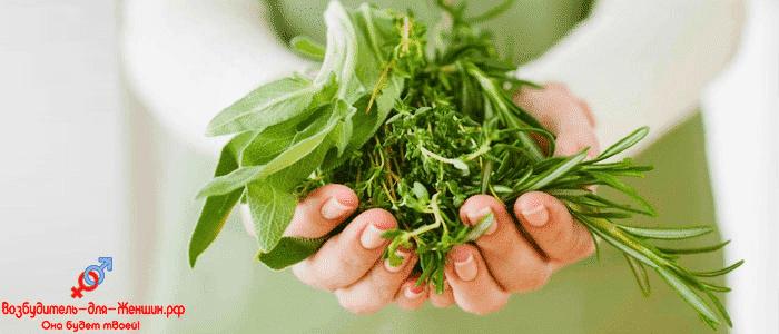 Женские руки с зелеными травами